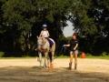 reno_horsebio