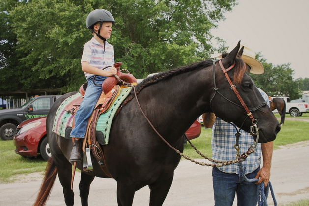 child riding on a dark brown Quarter Horse